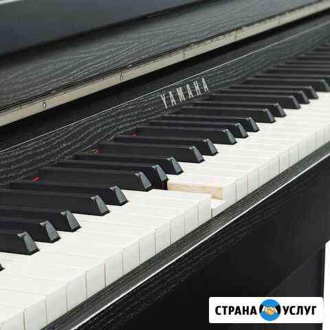 Концертмейстер,пианист Майкоп