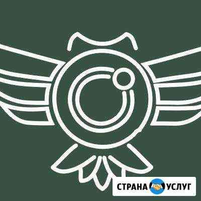 Виденаблюдение онлайн под ключ Воронеж