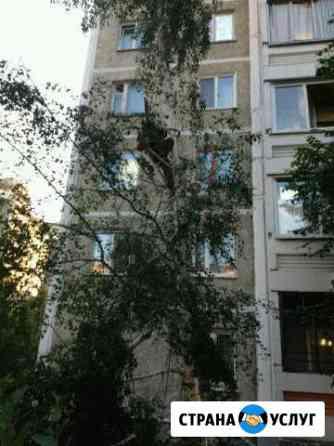 Спил деревьев любой высоты Екатеринбург