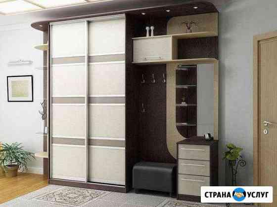 Шкаф-купе на заказ Чистополь