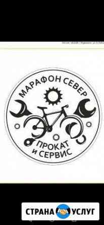 Вело сервис и прокат Мурманск