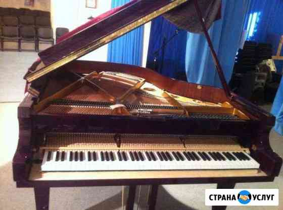Настройка пианино и роялей. Нижневартовск, Мегион Нижневартовск