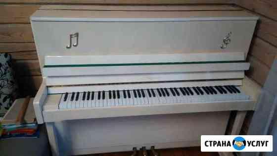 Мастер Настройщик Пианино и Роялей Брянская област Брянск