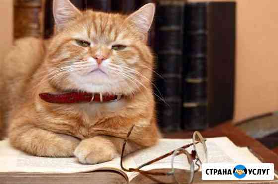 Персональные стихи: поздравления и продвижение Санкт-Петербург