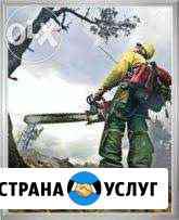 Профессиональный Спил Деревьев, Корчевание пней Ставрополь