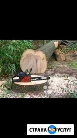 Спил дерева с вывозом мусора Ростов-на-Дону