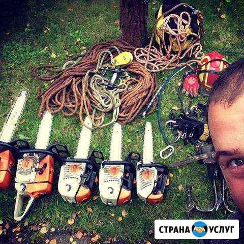 Валка, спил деревьев Санкт-Петербург