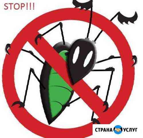 Санобработка от насекомых, грызунов и плесени Москва