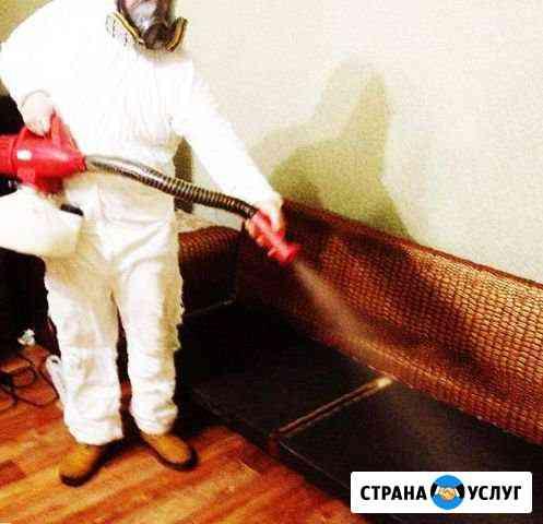Уничтожение клопов тараканов мышей Нижний Новгород