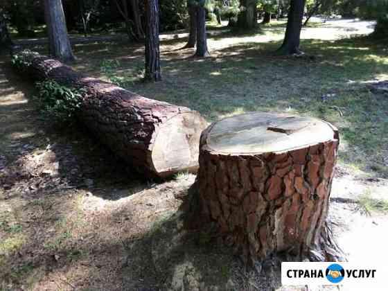 Спил и обрезка плодовых деревьев. Корчевание пней Ростов-на-Дону