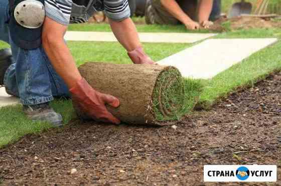 Газоны рулонные,искусственные,посевные Махачкала