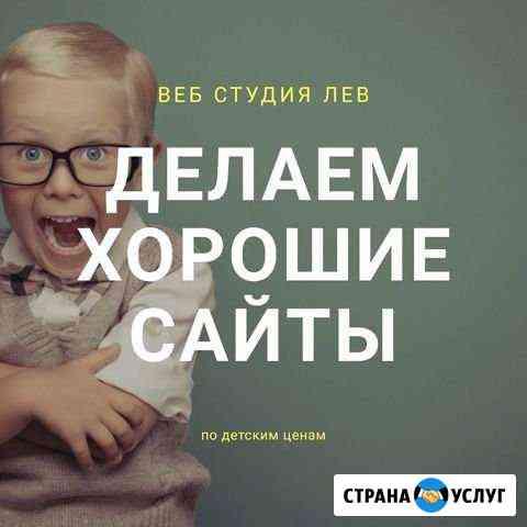 Создание сайтов / настройка рекламы Волгоград