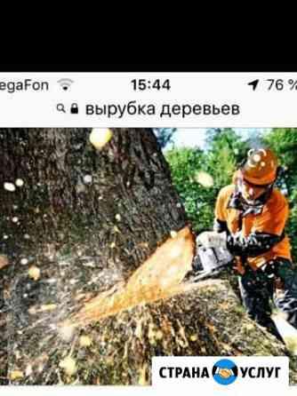 Вырубка,обрезка деревьев Кизилюрт