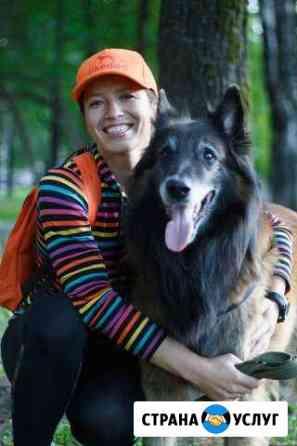 Выгул собак, передержка, зоотакси, зоозащита Пермь