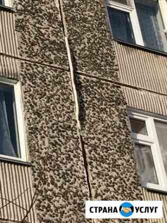 Утепление квартир, ремонт межпанельных швов. Устра Мирный