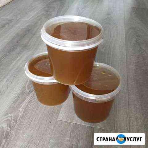 Мёд Псков