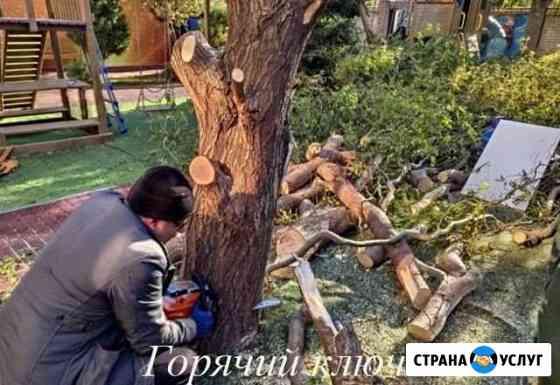 Спил деревьев Горячий Ключ