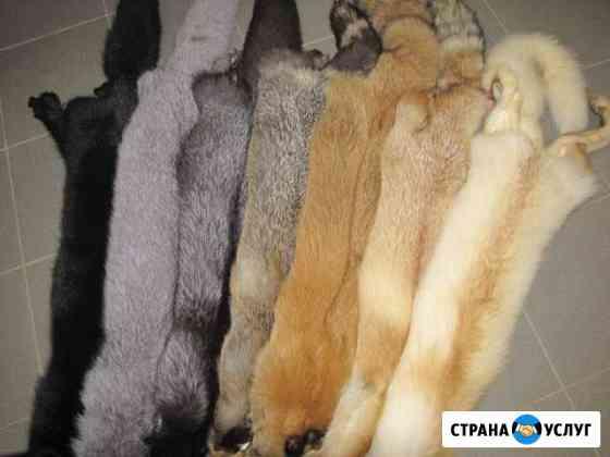 Пошив и ремонт меховых и кожаных изделий Томск