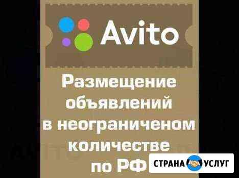 Постинг на авито Нижний Новгород