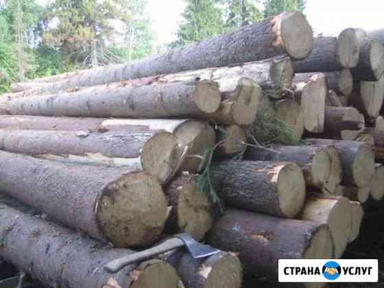 Круглый лес Горно-Алтайск