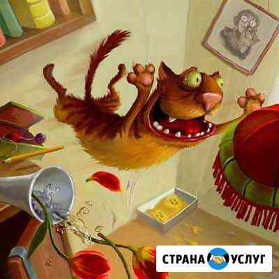 Услуги кошачьей няни Красногорск