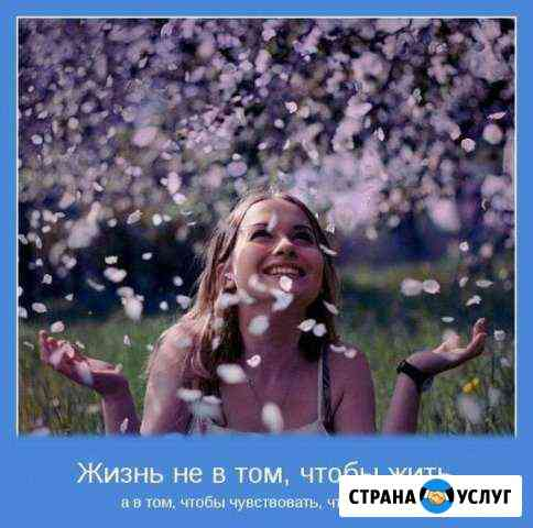 Стихи, тосты, сценарии на заказ Саяногорск