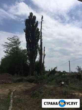 Спил распил аварийных деревьев Новокубанск