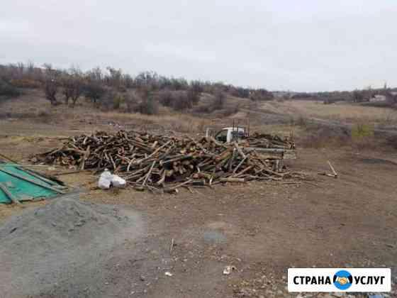 Дрова акация Новошахтинск