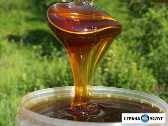 Мед натуральный- разнотравье пойменных лугов Ижевск