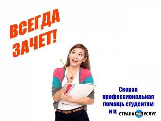 Дипломы, курсовые, рефераты, задачи оформим онлайн Воронеж