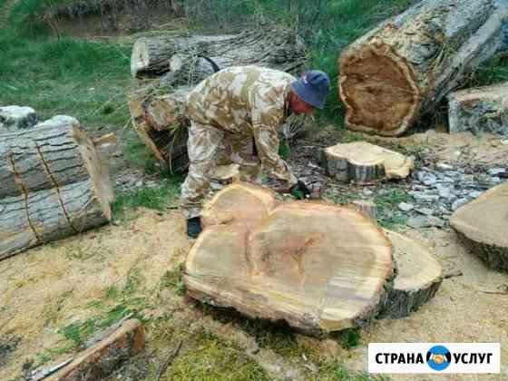 Спил деревьев Симоненко