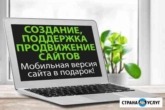 Cоздание, поддержка и продвижение сайтов Новосибирск