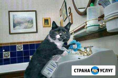 Любая помощь по хозяйству Иваново