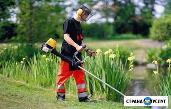 Скошу траву триммером Троицк