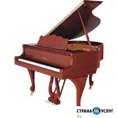 Ремонт музыкальных инструментов и продажа Липецк