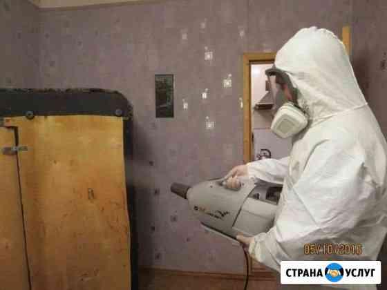 Уничтожение тараканов, клопов Хабаровск+пригород Хабаровск