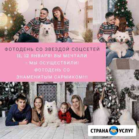 Фотодень. Фотосессия с самоедом Новочеркасск