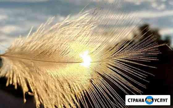 Чистка пуха пера.murmanpero Мурманск