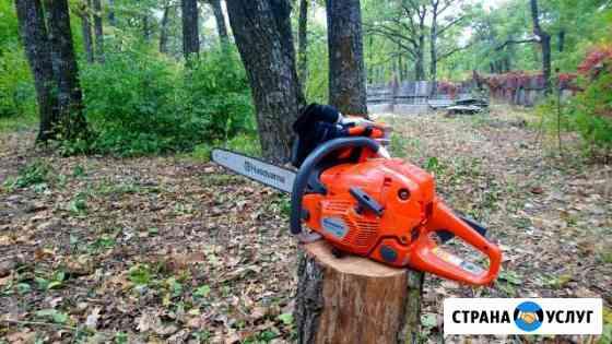 Спил и валка деревьев Нариманов
