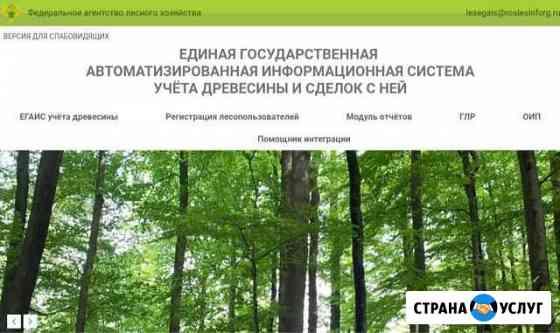 Предоставление услуг егаис Лес Кемерово