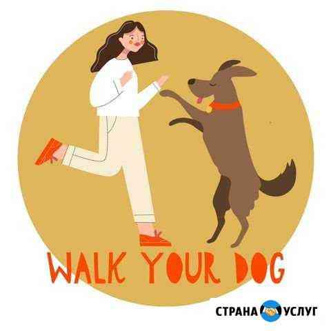 Выгул собак,дрессировка,догняня Walk Your Dog Нижний Новгород