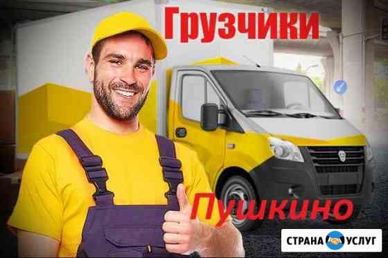 Грузчики Пушкино