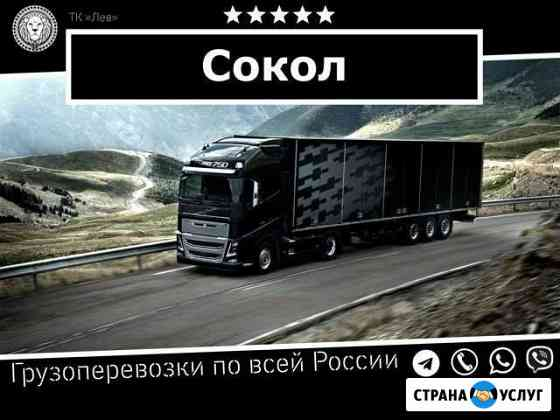 Грузоперевозки Сокол