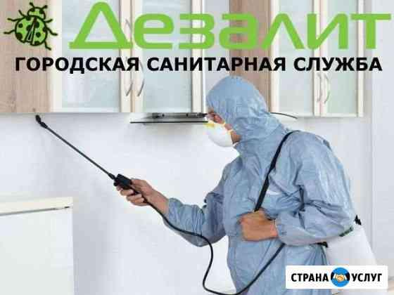 Уничтожение клопов и тараканов в Томске Томск