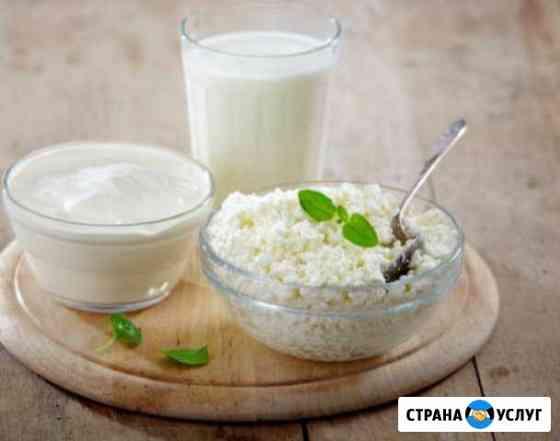 Молочные продукты Шадринск