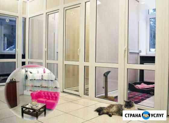 Гостиница для домашних животных Ижевск