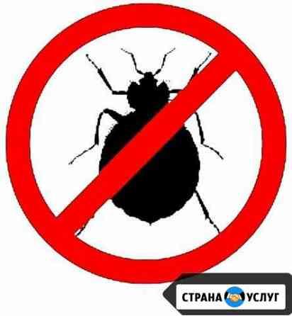 Уничтожение клопов,тараканов,блох,муравьев,мышей Саранск