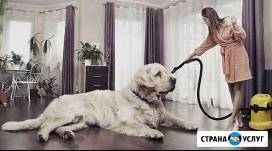 Уборка, лёгкий косметический ремонт и др Петропавловск-Камчатский