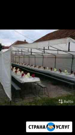 Прокат палаток, столов и стульев Павлодольская