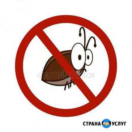 Травим тараканов Улан-Удэ